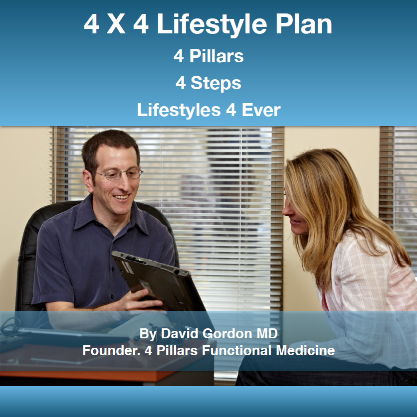 4x4 Lifestyle Plan by David Gordon, MD