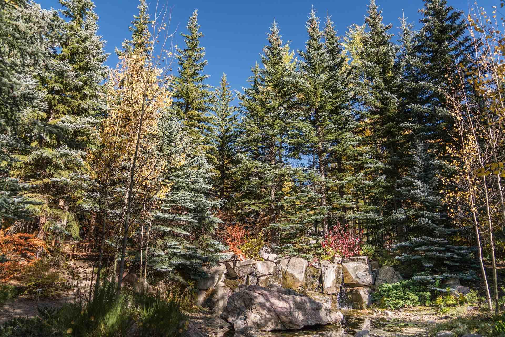 4 Pillars Functional Medicine – Vail Colorado Mountains