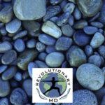 RevolutionaryMD – 4 Pillars Functional Medicine Community Partner (Featured Image)