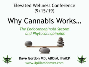 medical-cannabis-marijuana-doctor-expert-endocannabinoid-system