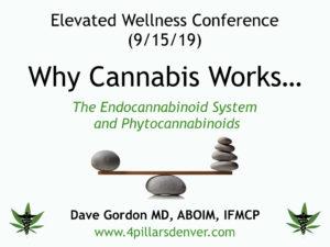 medical-cannabis-marijuana-doctor-expert-endocannabinoid-system